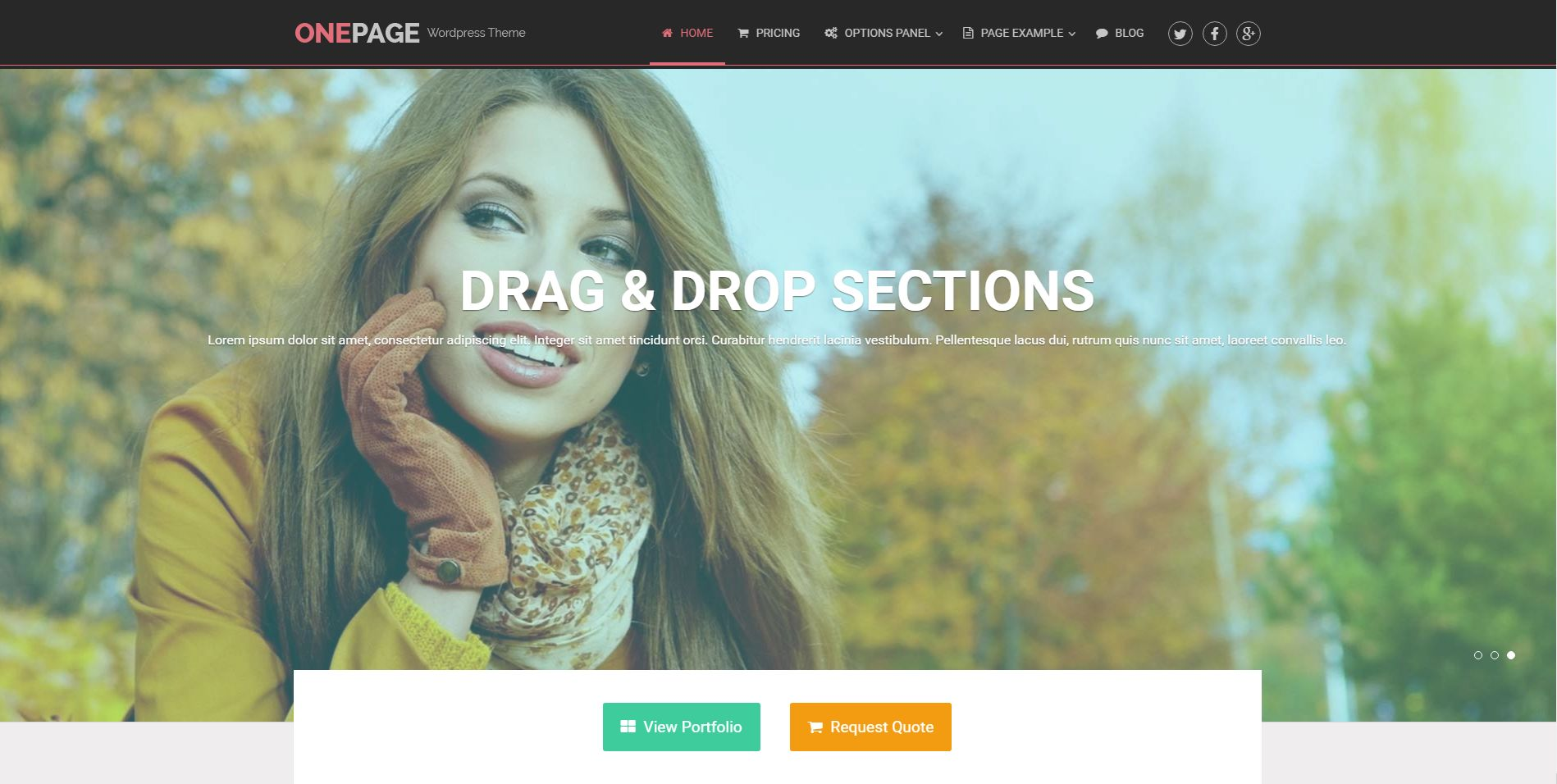 Drag-N-Drop Page Builder WordPress Theme