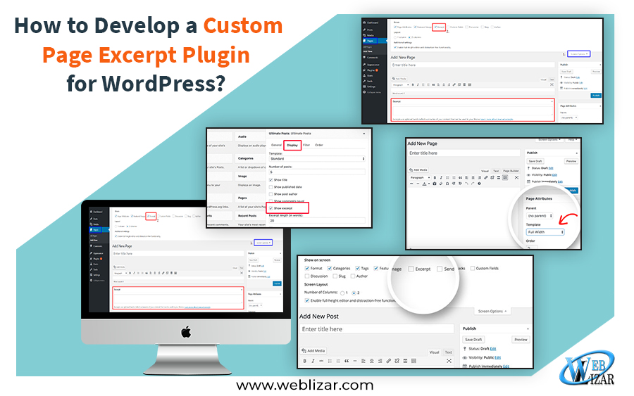 How to Develop a Custom Page Excerpt Plugin for WordPress?