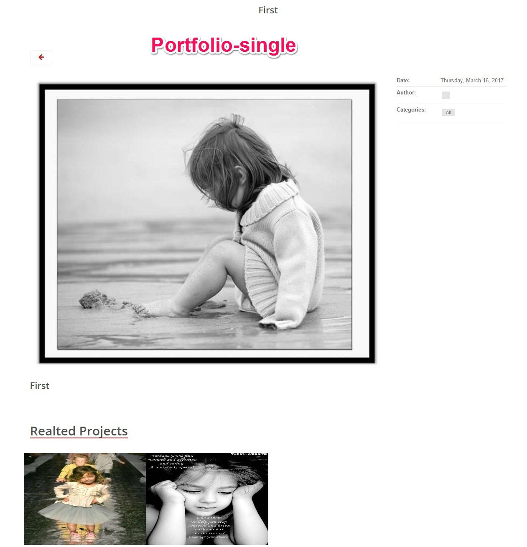 Portfolio-single