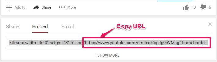 video URL