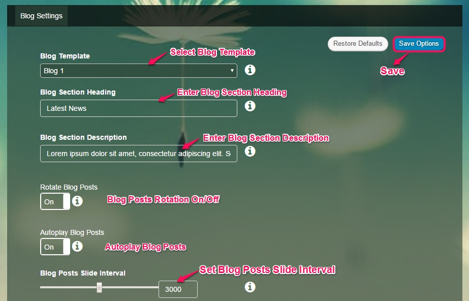 blog settings
