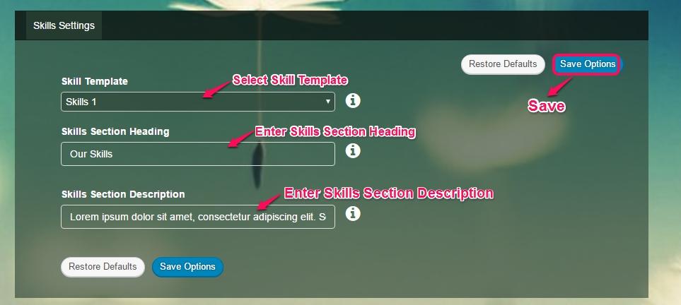 skill settings
