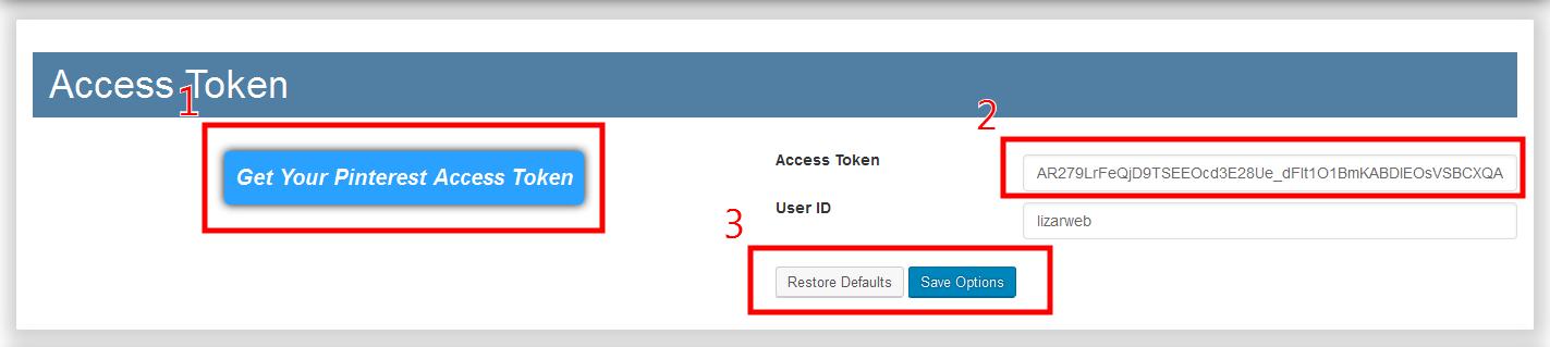 Get-and-set-Pinterest-access-token