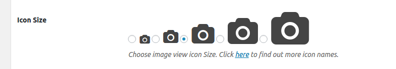 Font Awesome Icon Size