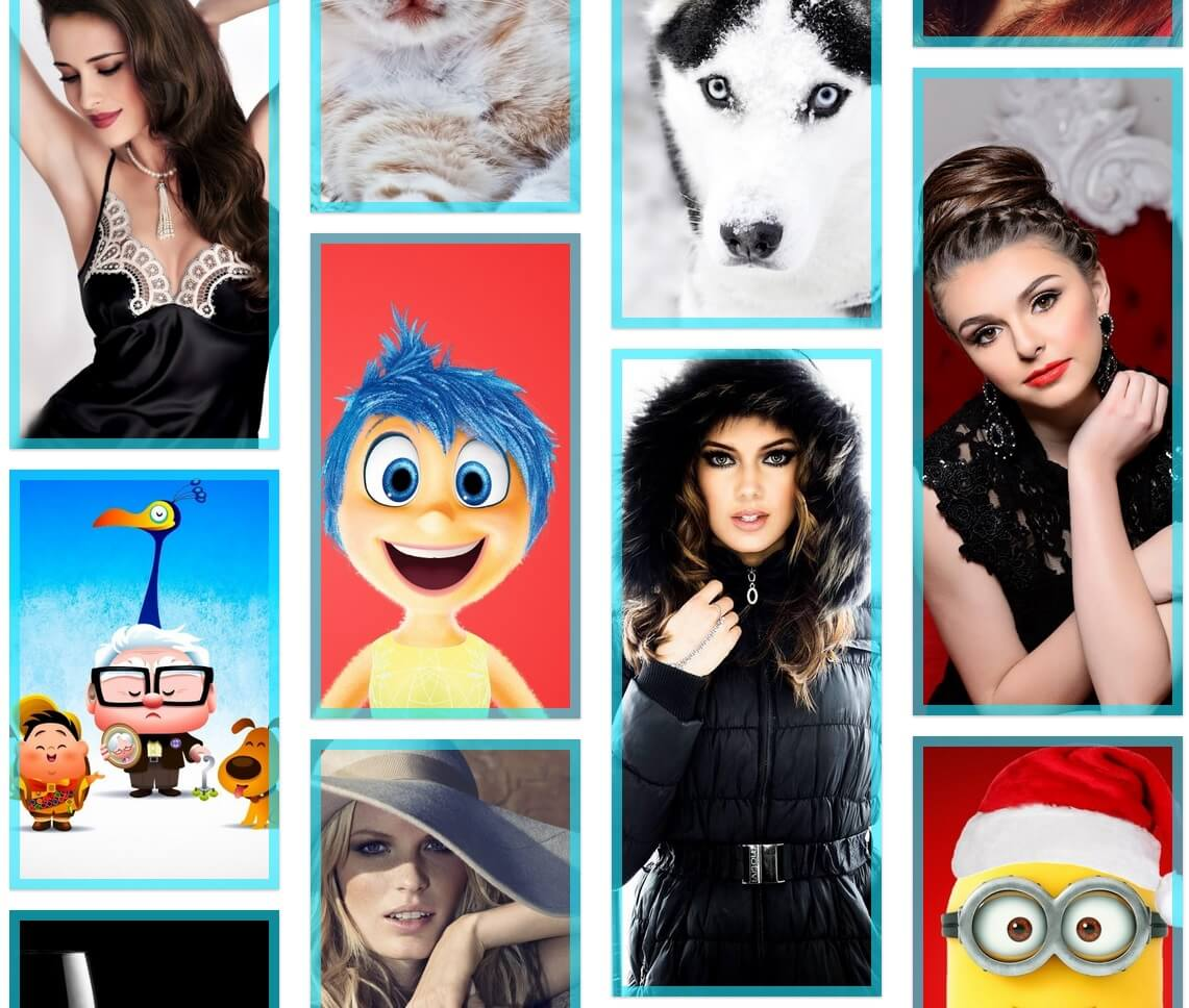 photo-video-link-gallery-free-wordpress-plugin