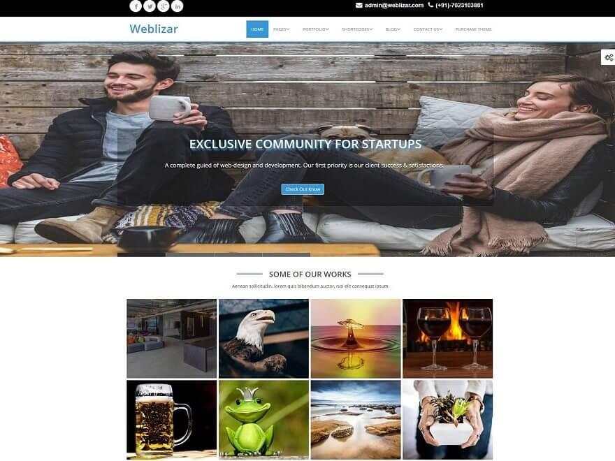 Weblizar Premium Theme