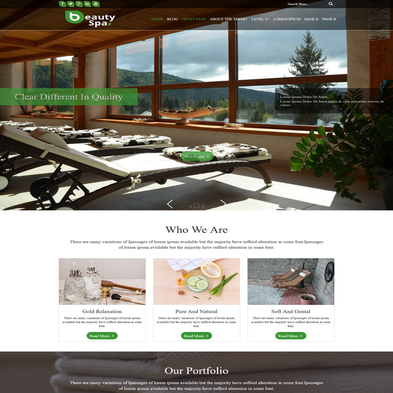 BeautySpa Premium WordPress Theme Weblizar Themes