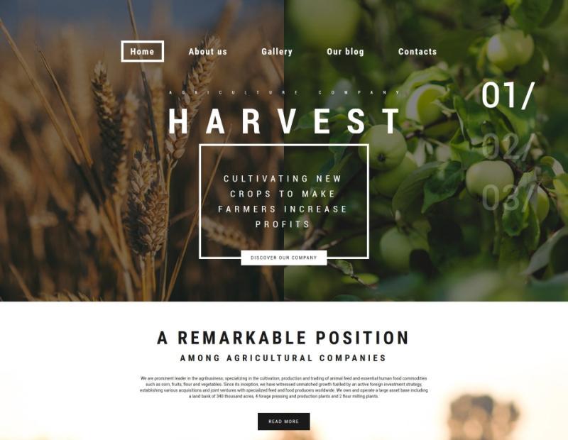 6-harvest