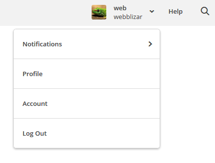 click on account link at admin mailchimp