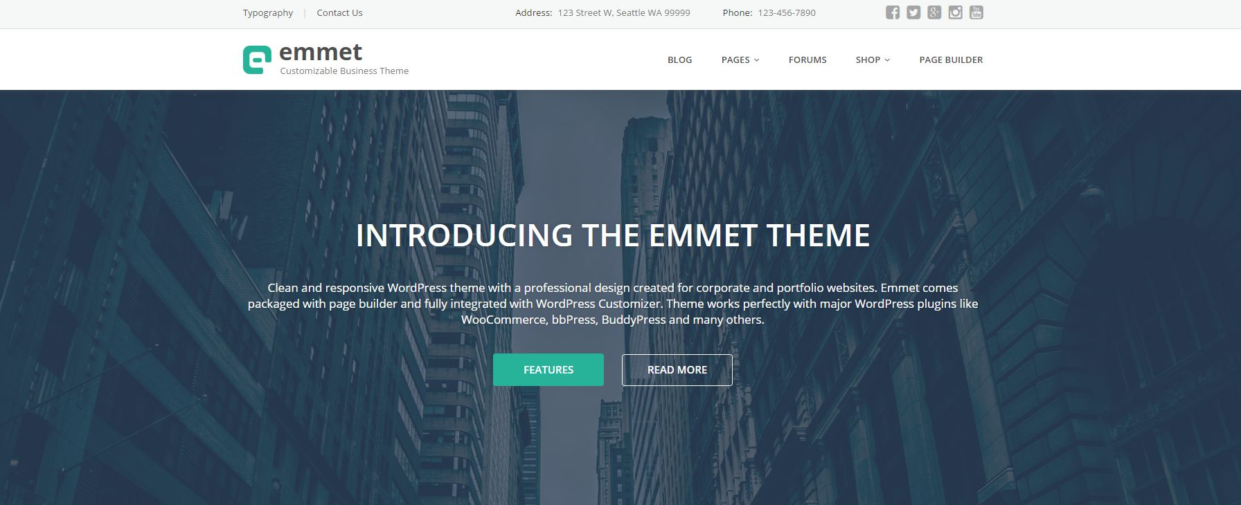 Emmet - Business Responsive WordPress Theme