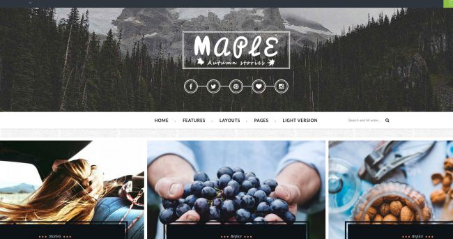 maple-wordpress-theme
