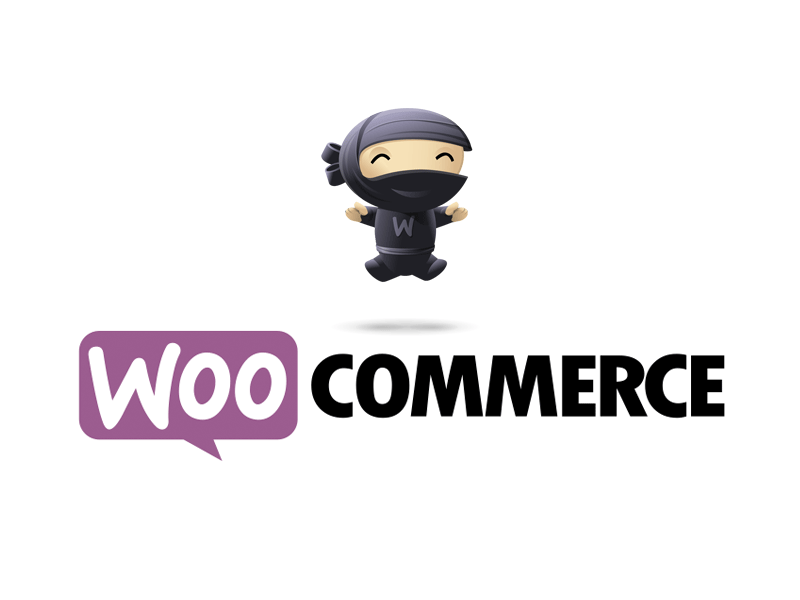 Top 10 Ecommerce Plugins for WordPress