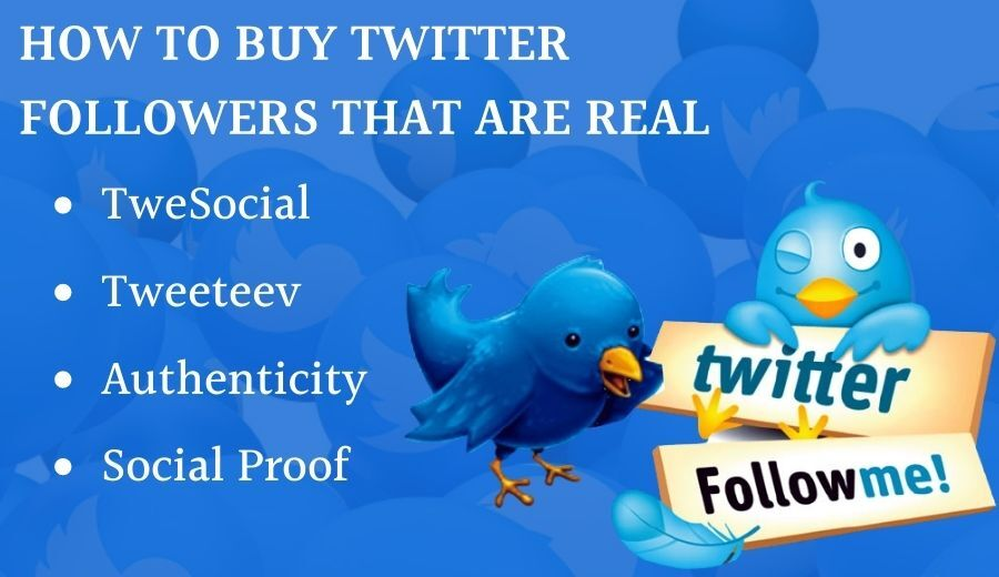 How To Buy Twitter Followers That Are Real